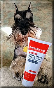 Pet Chlorhexidine Tooth Gel