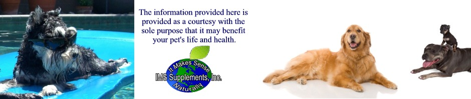 Nutri-Dog.com - Wellness, Nutrition, & Answers